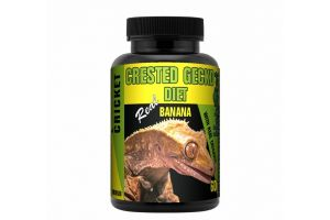 Crested Gecko Diet Banana & Crickets