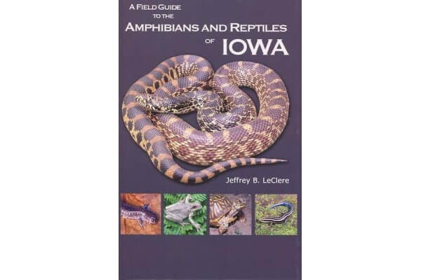 A Field Guide to the Amphibians and Reptiles of Iowa- Soft Cover
