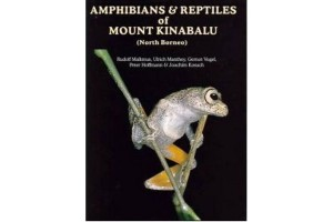 Amphibians and Reptiles of Mount Kinabalu (North Borneo)