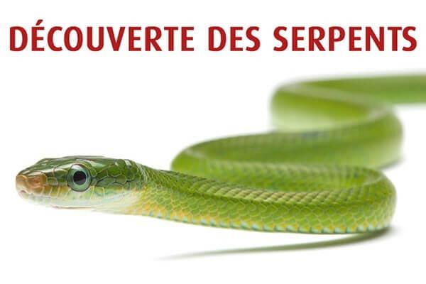Découverte des serpents - Dimanche 9 Mai 2021