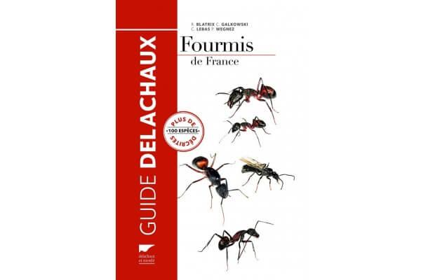 Fourmis de France - 100 espèces décrites