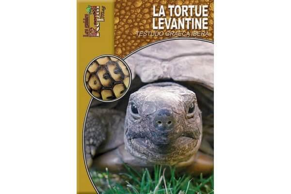 La tortue levantine, Guide Reptilmag