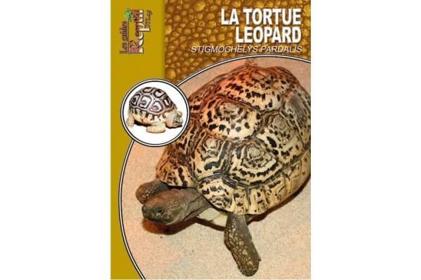 La tortue léopard - Guide Reptilmag