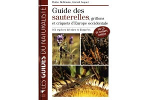 Guide des Sauterelles - Grillons et Criquets d'Europe Occidentale