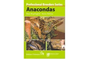 Professional Breeders Series - Anacondas
