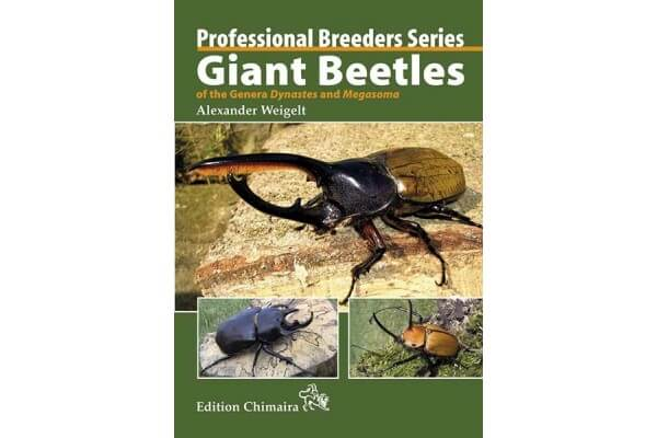 Giant Beetles of the Genera Dynastes and Megasoma