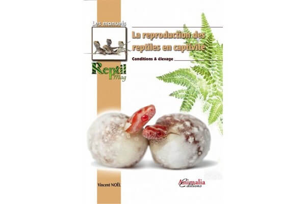 La reproduction des reptiles en captivité