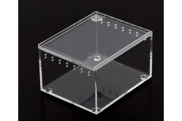 Boite d'élevage en acrylique transparente