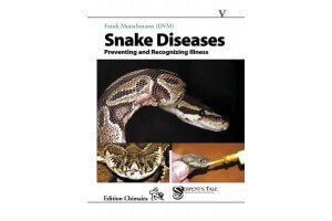 Snake Diseases - Preventing and Recognizing Illness
