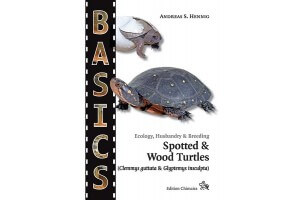 Spotted & Wood Turtles (Clemmys guttata & Glyptemys insculpta) - Collection BASICS