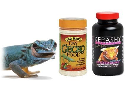 Nourriture pour Gecko - Alimentation pour Gecko- La Ferme Tropicale
