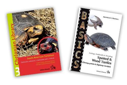 Livres tortues en anglais