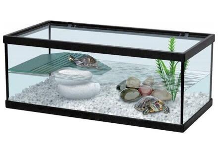 Aquariums en verre