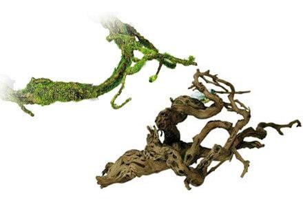 Achat Branche – Achat Racine – Achat Liane - Branches/Racines/Lianes - La Ferme Tropicale