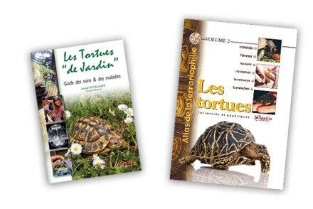 Livres tortues en français