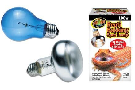 Achat Ampoule – Ampoules - La Ferme Tropicale