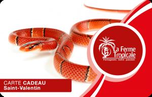 Saint Valentin serpent